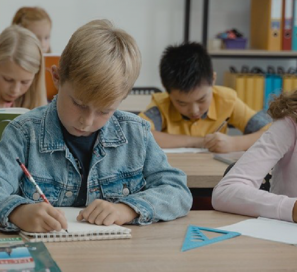 Neurociência na Educação Infantil o que é e como aplicar